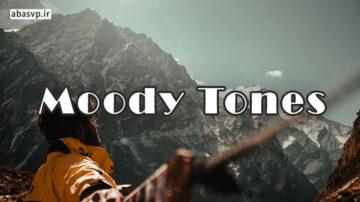 پریست رنگی روی مود Moody Tones Presets